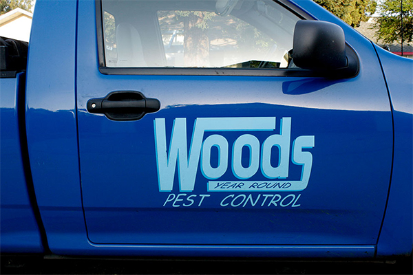 logo-on-vehicle